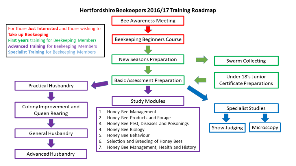 Training Roadmap